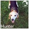 Hunter *