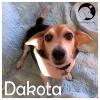Dakota *