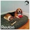 Revlon *