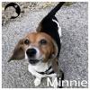 Minnie *