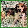 Logan *