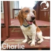 Charlie *