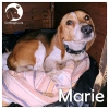 Marie *