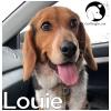 Louie *