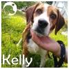 Kelly *