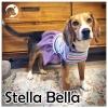 Stella Bella *
