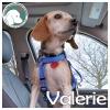 Valerie *