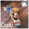Cody *