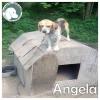 Angela *