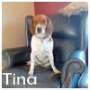 Tina *