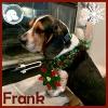 Frank *
