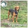 Stephanie *