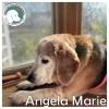 Angela Marie *
