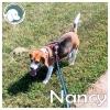 Nancy *