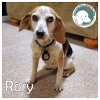 Rory *
