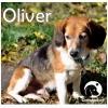 Oliver *