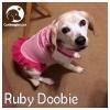 Ruby Doobie *