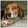 Edith *