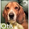 Otis *