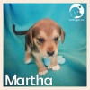 Martha *