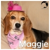 Maggie *