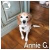 Annie G.