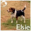 Elsie *
