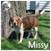 Missy *