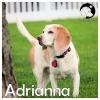 Adrianna *