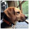 Josephine *