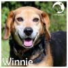 Winnie *