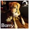 Barry *