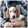 Sally *