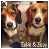 Zeke & Zoey