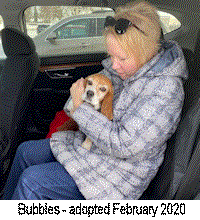 bubbles adopted aarb2
