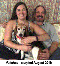 patches adopted aarb