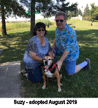 suzy adopted aarb